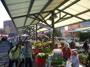 Bloomington Farmer's Market